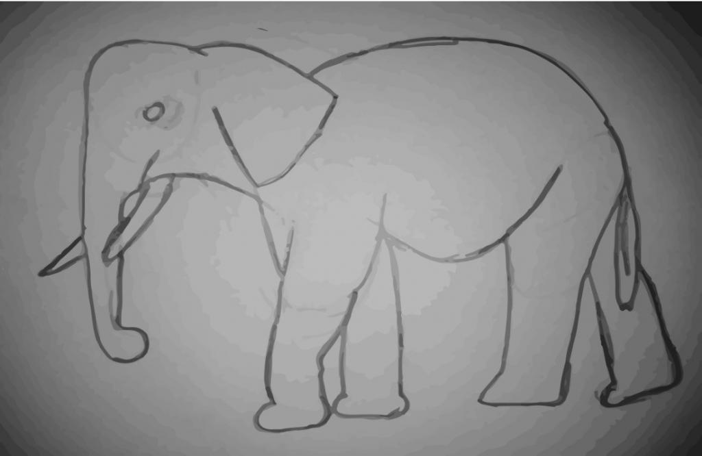 detaily slona