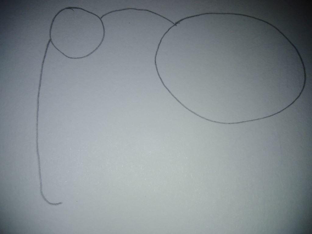 základní obrysy slona