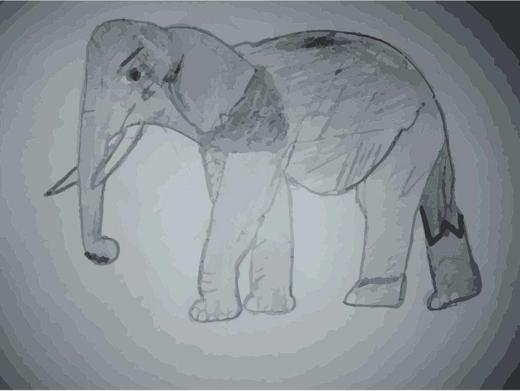 vybarvení slona